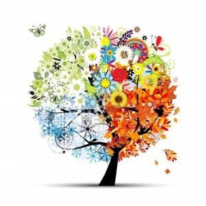 quattro-stagioni-primavera-estate-autunno-inverno